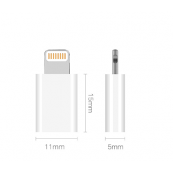 Micro(Input) to IPhone (Output)